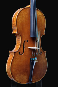 Viola by Antoine Cauche - Side vue