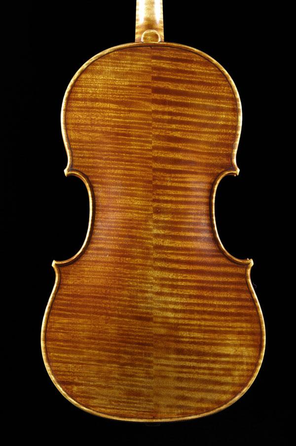 Viola - Back Vue