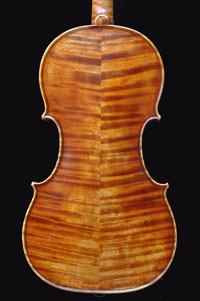 Violin by Antoine Cauche - Back