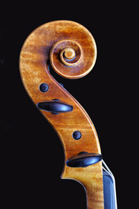 Violin by Antoine Cauche - Chevillier