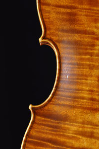 Violin by Antoine Cauche - Eclisses - Back
